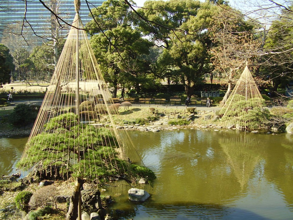 The weird rigging of the trees in Hibiya Park. (Photo: Ryan Robinson)